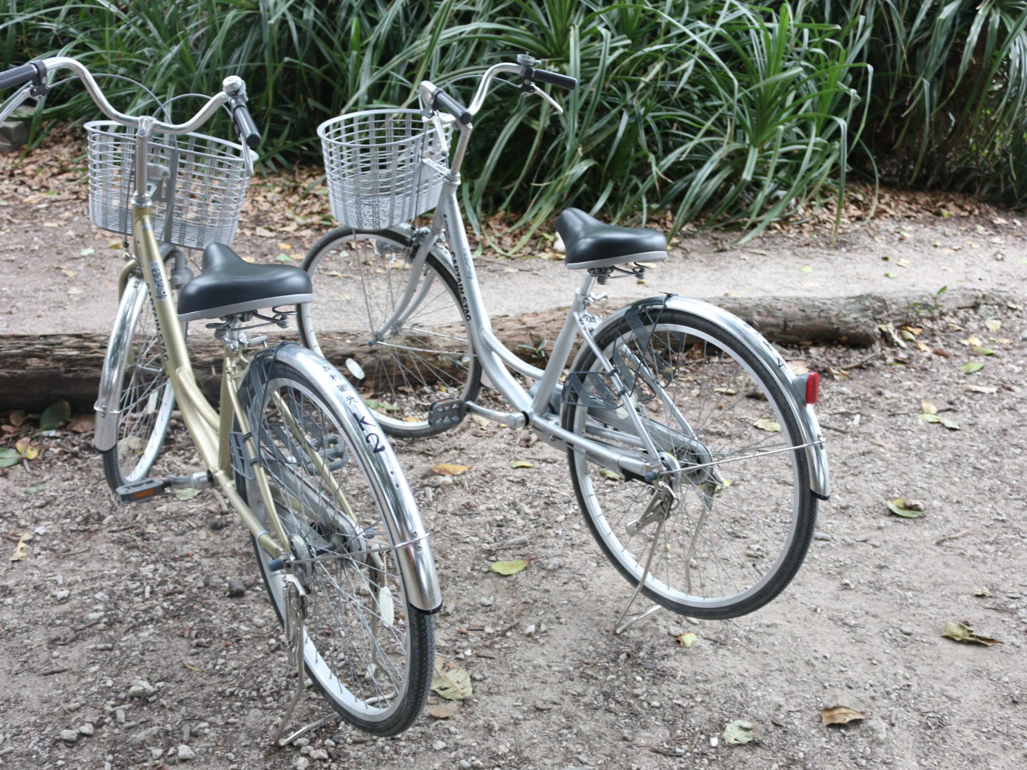 石垣島から朝一で竹富島でサイクリングを楽しむ〜年末に行く、離島旅2017-2018〜