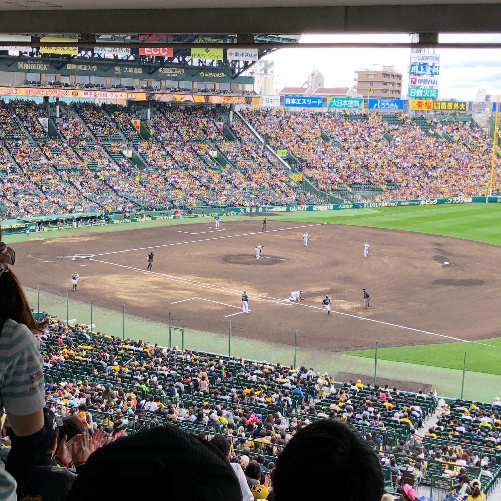 阪神戦を甲子園 アイビーシートで観覧!〜私の野球の楽しみ方〜