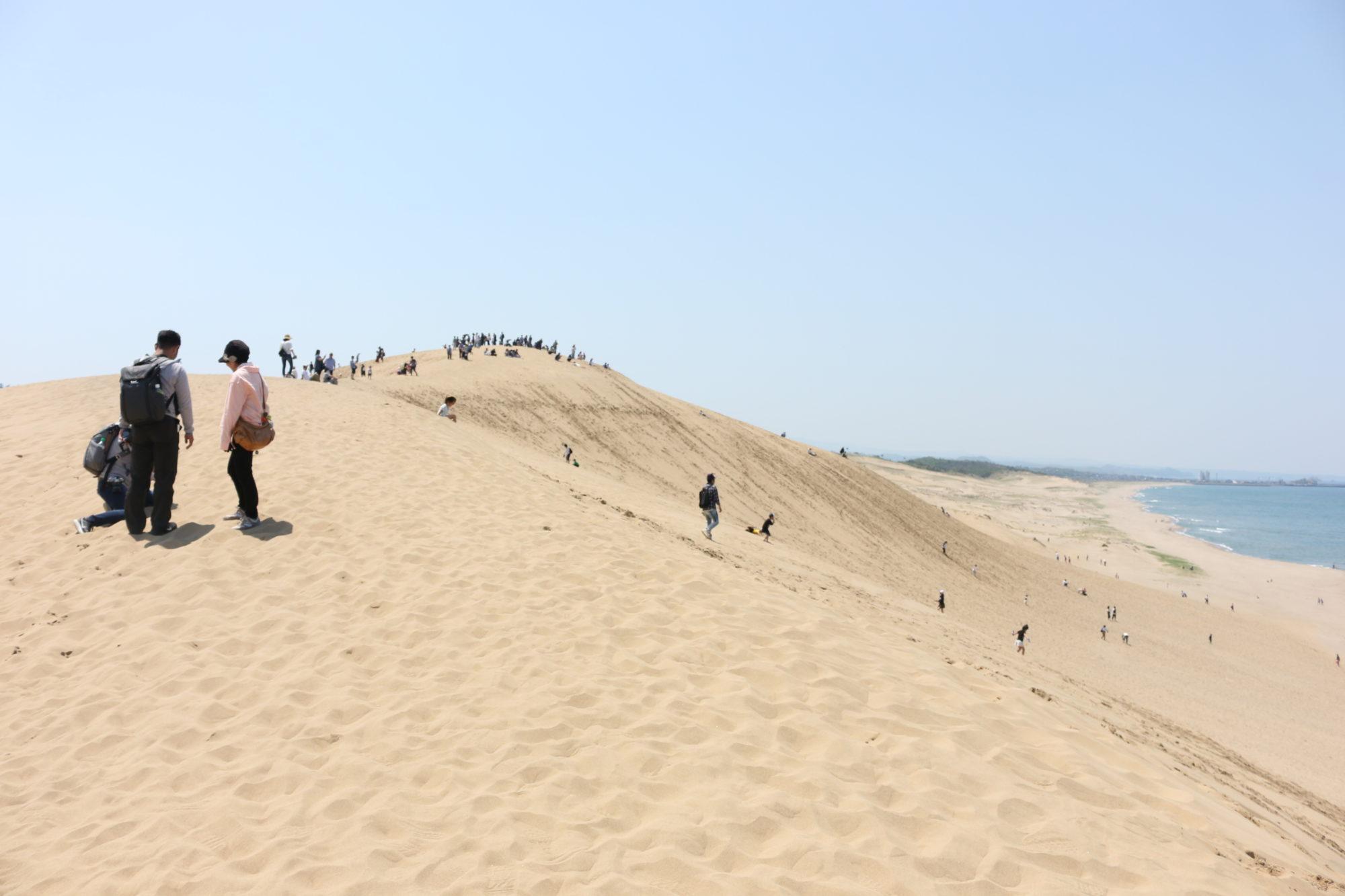鳥取砂丘を楽しむ〜ゴールデンウィークに1泊2日の大阪からの弾丸ツアー〜