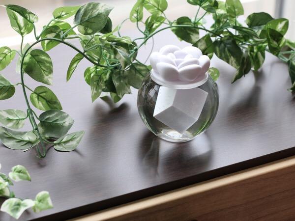 ソリディウム撮影会 パート2〜3Dプリンターで作ったソリッドをハーバリウム風に水に浮かせる〜