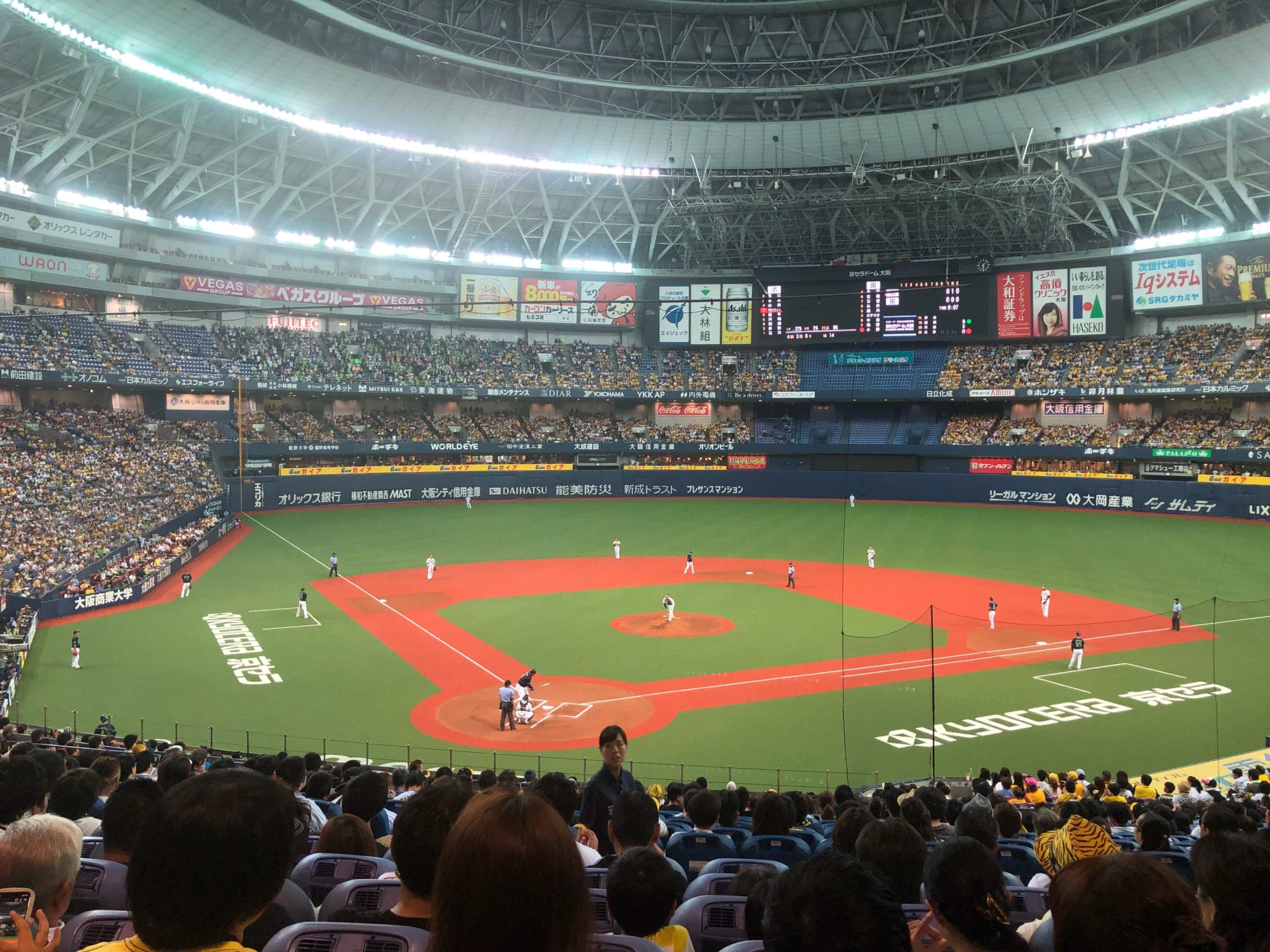 京セラドーム バックネット裏で阪神×ヤクルト戦を満喫する