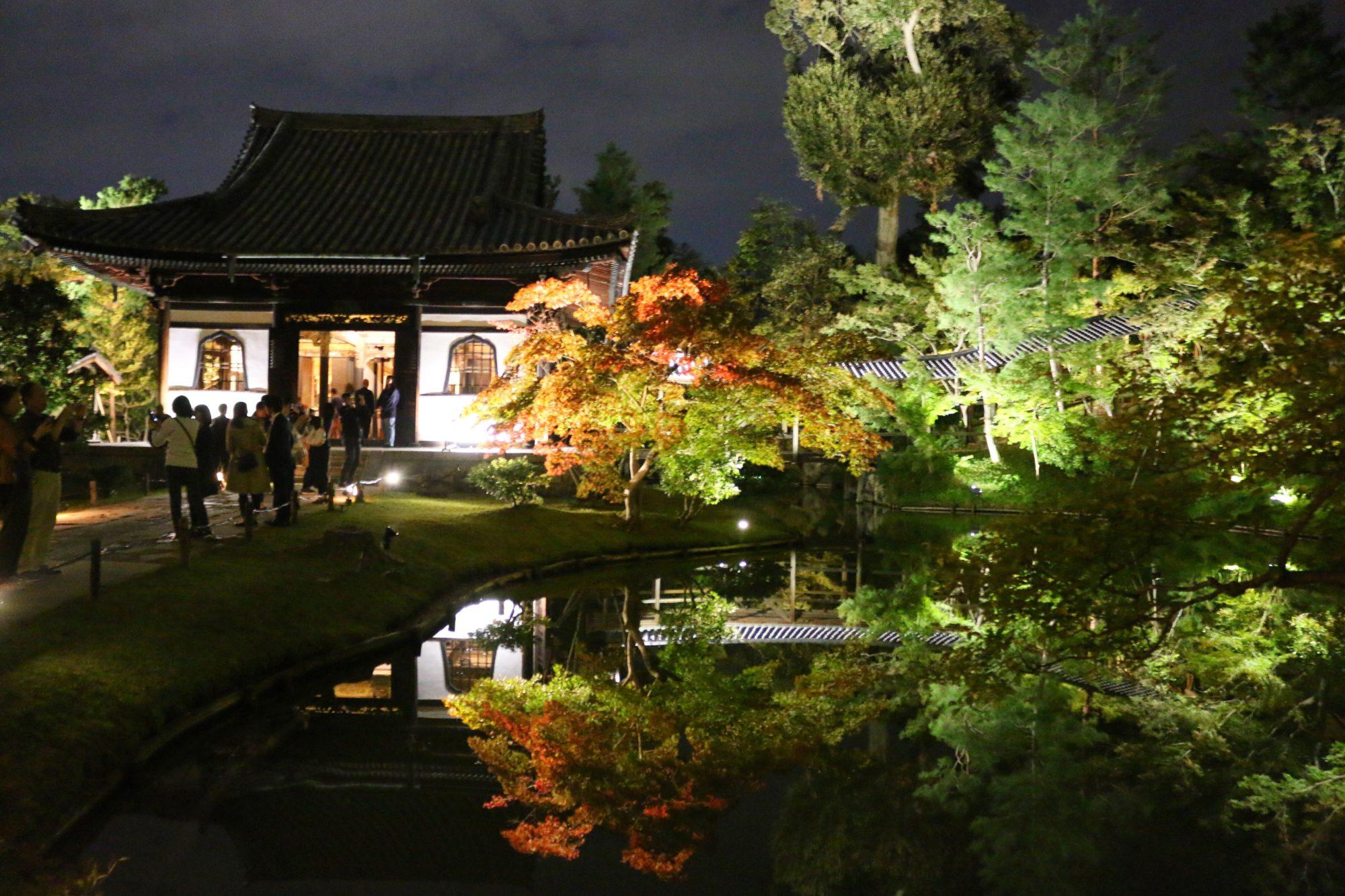 京都 東山 高台寺 秋の夜間拝観の池の美しさに感動