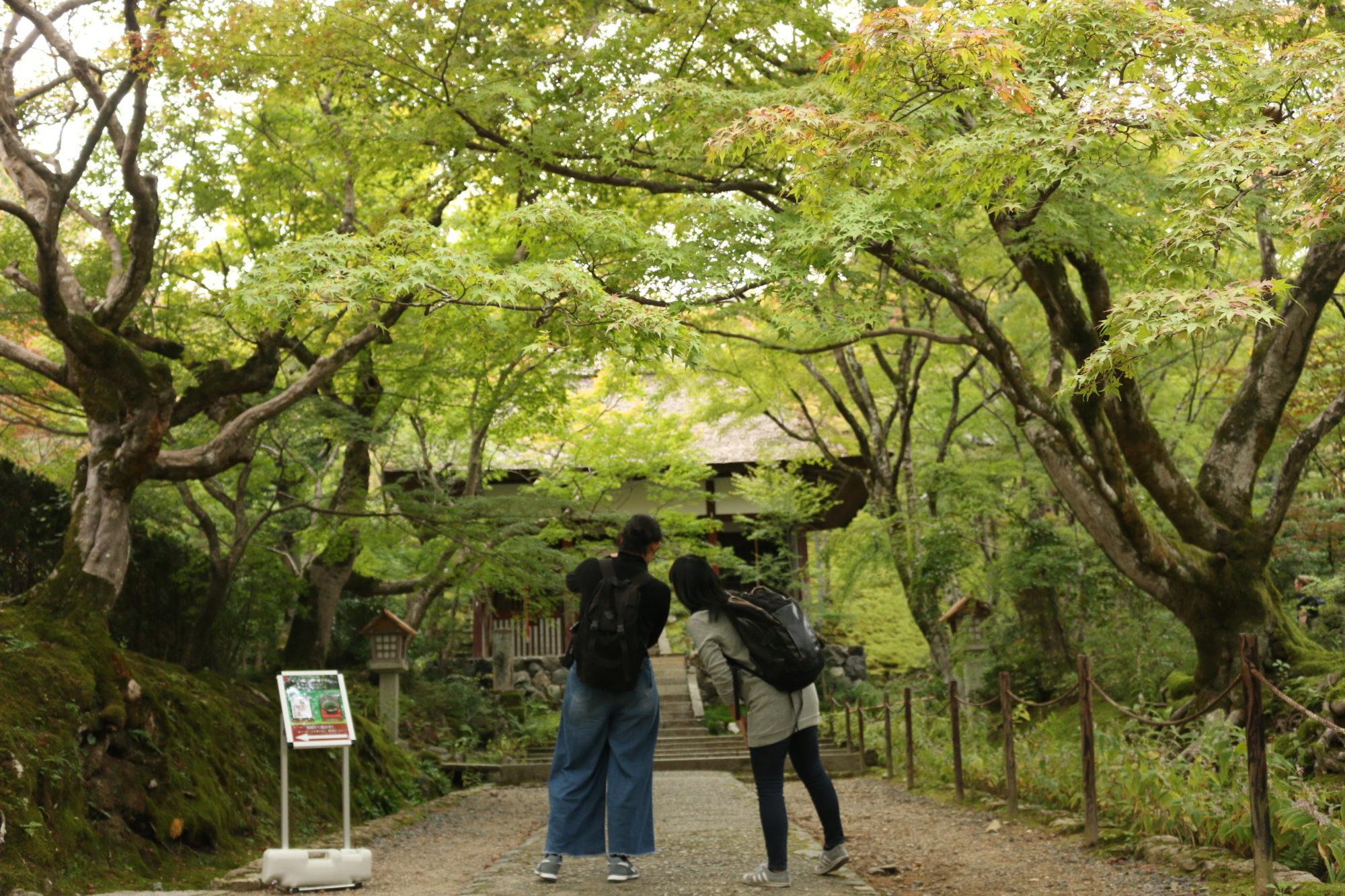 京都嵐山 常寂光寺でほっこりする