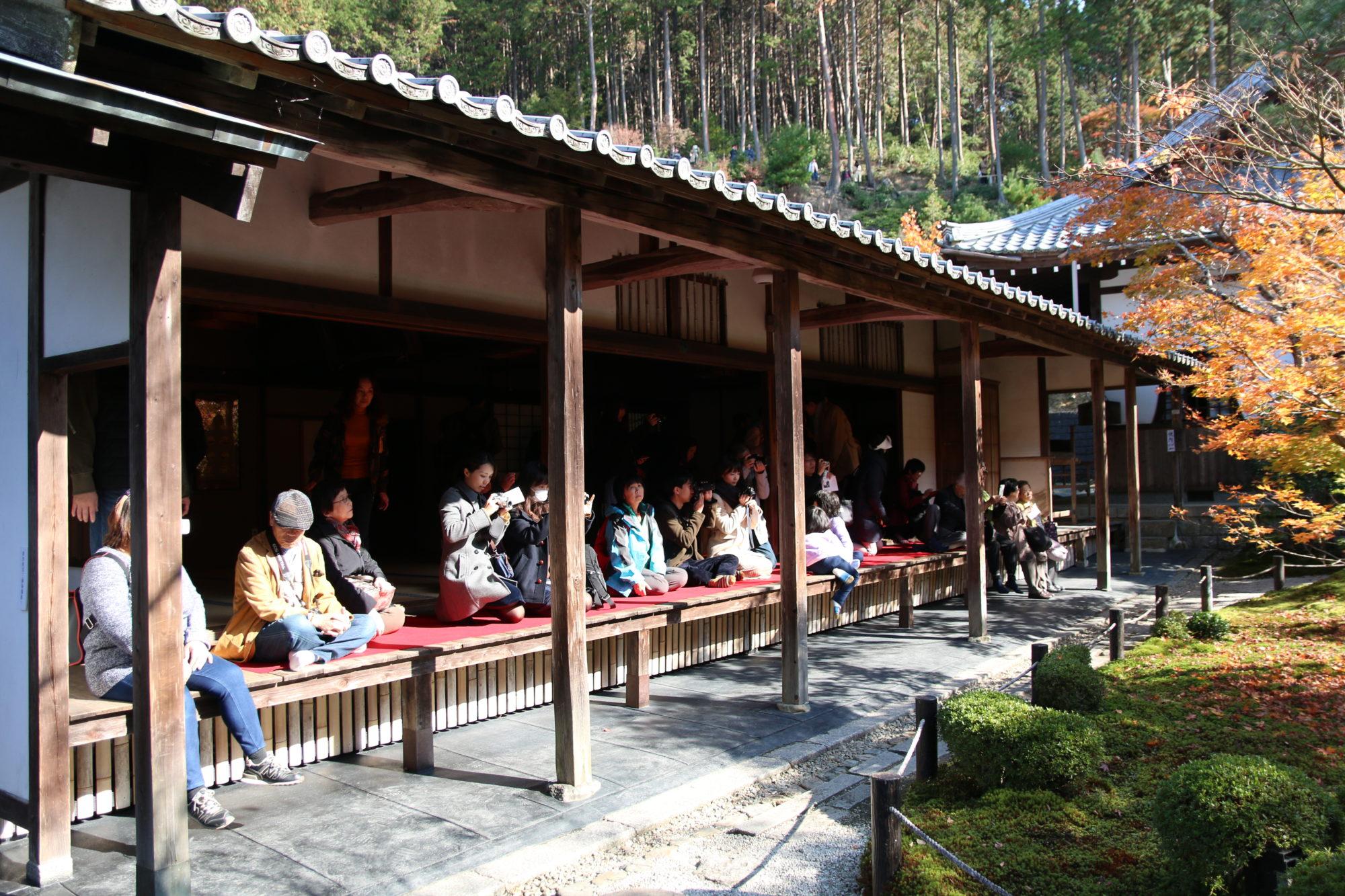 京都で紅葉を楽しむ〜圓光寺で写真を撮りながら歩く〜
