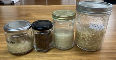 日本の発酵食:麹を使った手作り料理で菌活/腸活〜初心者が作った簡単料理〜